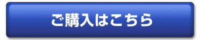 ボタンB.jpg