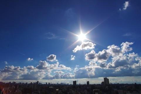 日差し.jpg