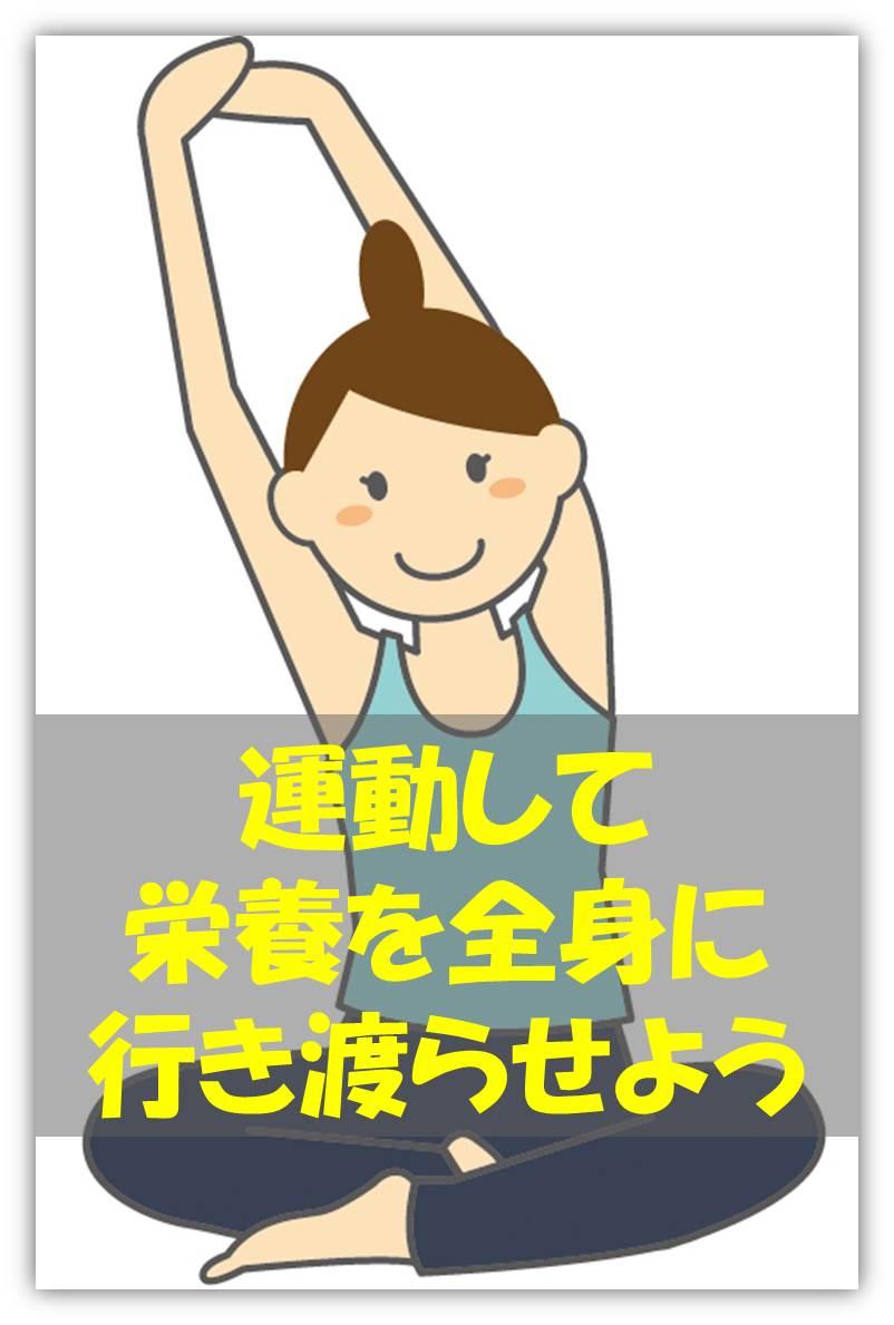 運動.jpg